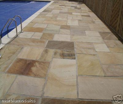 mint fossil Indian sandstone